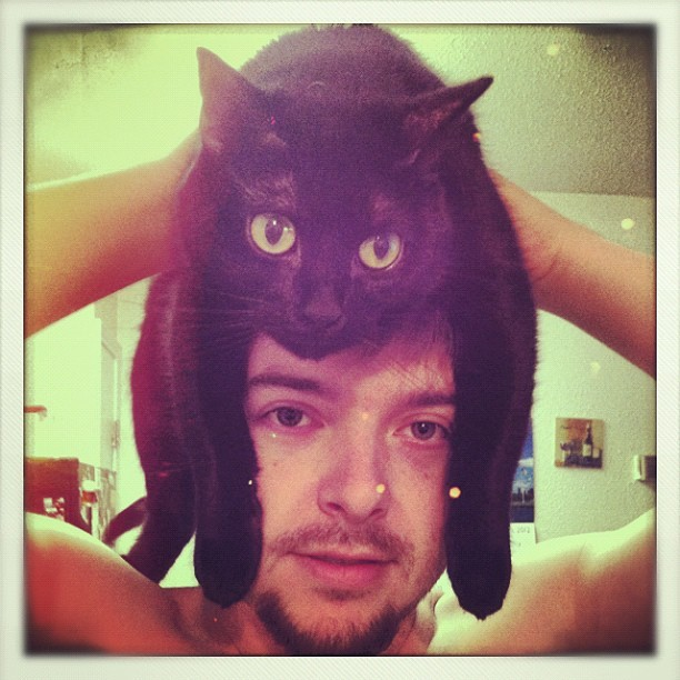 Zoe-cat-wig