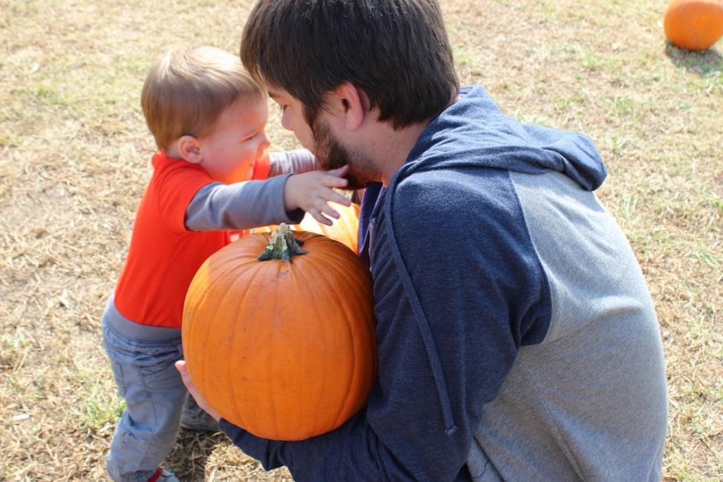 pumpkinpicking2015-14